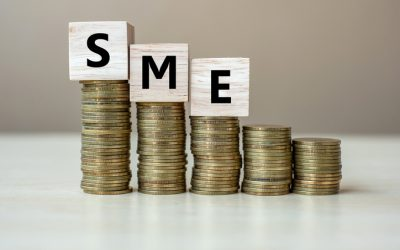 Banking Circle study of online SME merchants reveals banking gaps that Payments businesses can fill